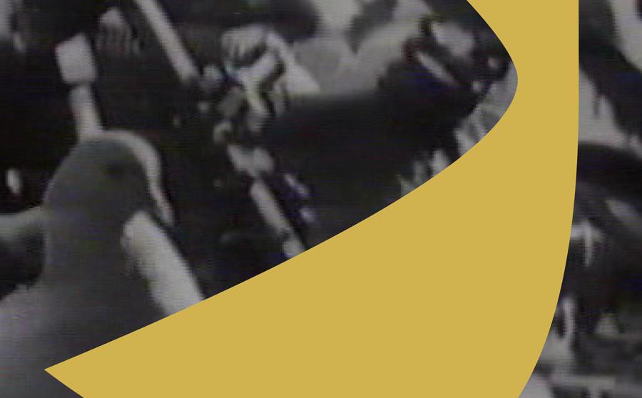 Rokhdad-e Tazeh Documentary 34: Khosrow Sinai